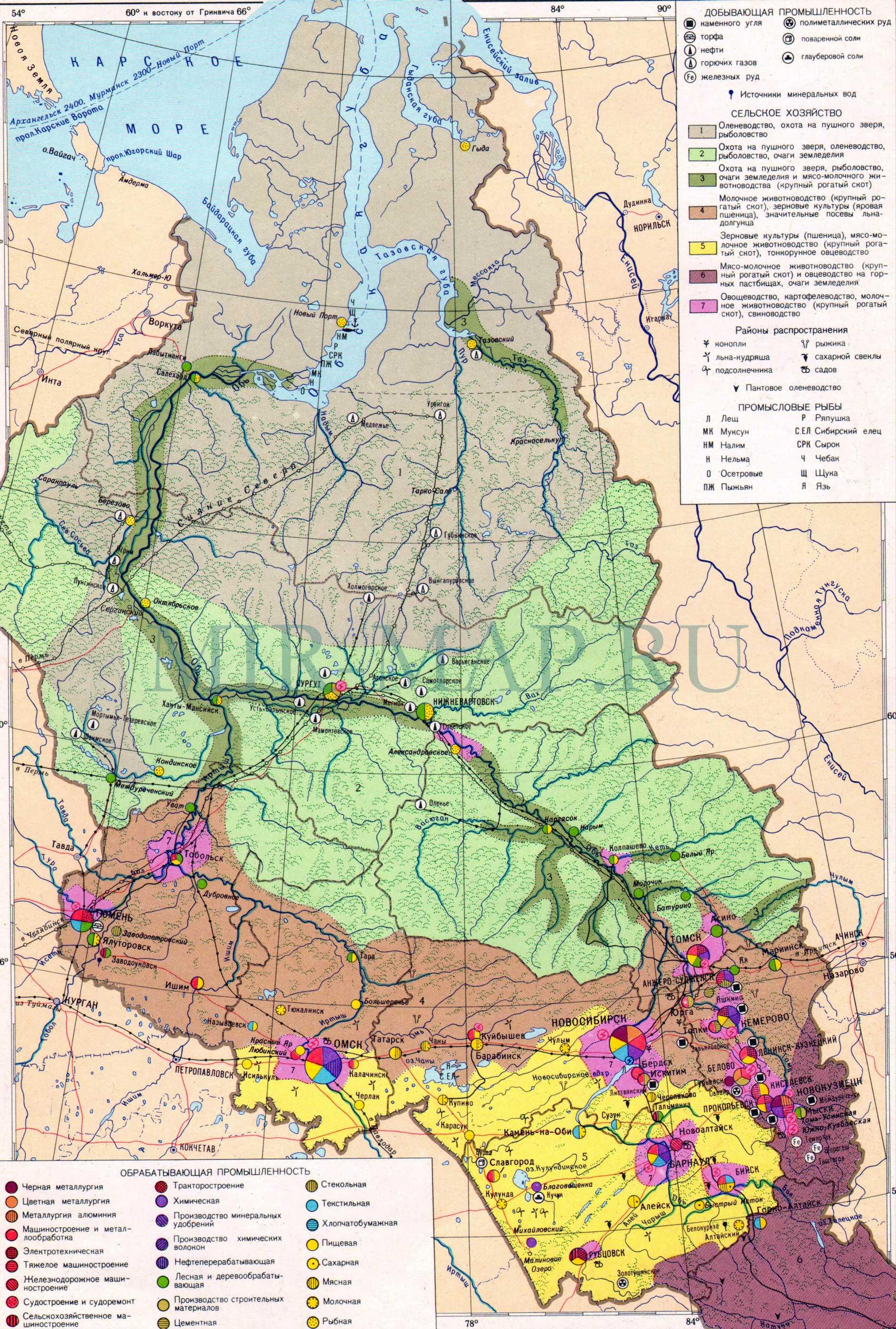 Экономическая карта Западной Сибири.